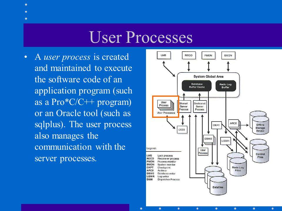 User Processes