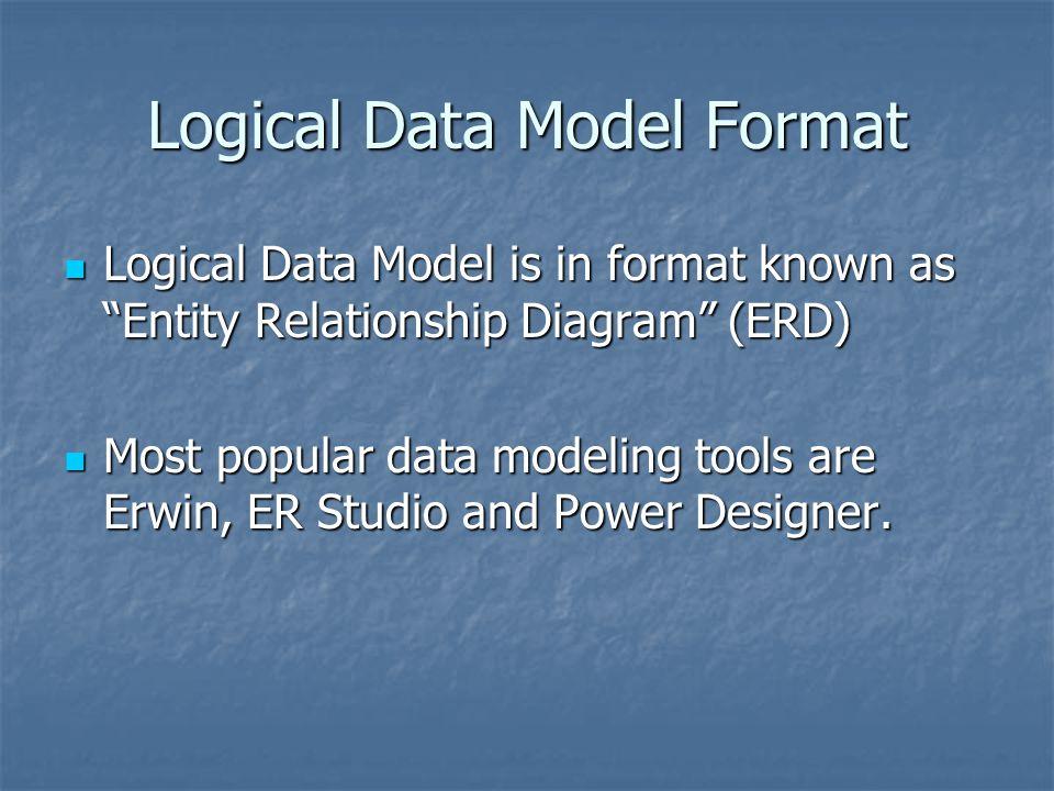 Logical Data Model Format