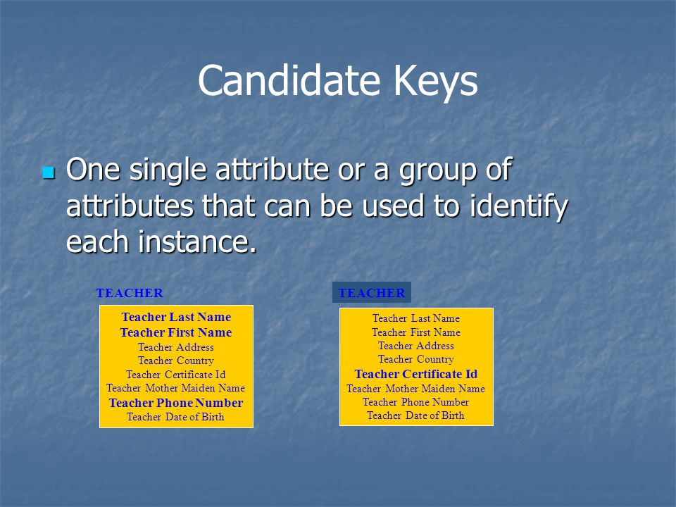 Candidate Keys One single attribute or a group of attributes that can be used to identify each instance.