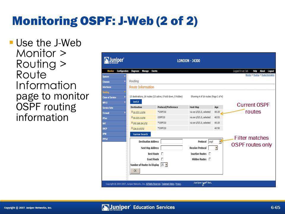 Monitoring OSPF: J-Web (2 of 2)