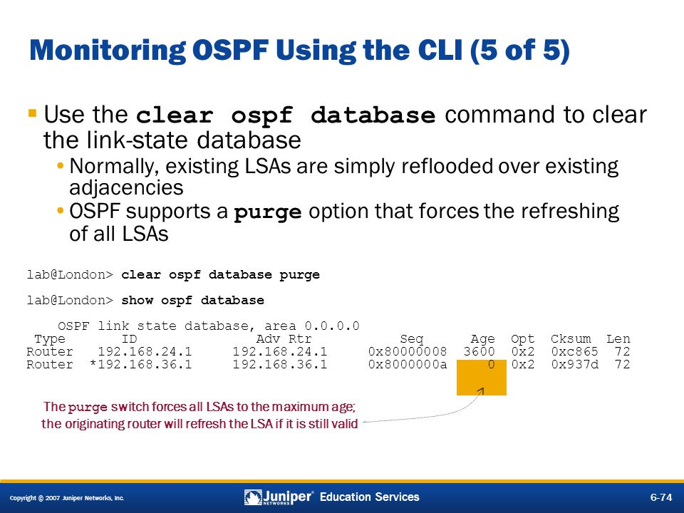 Monitoring OSPF Using the CLI (5 of 5)