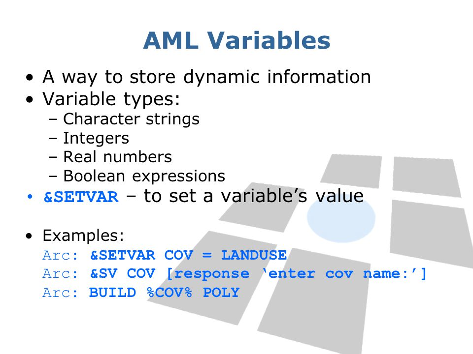 AML Variables A way to store dynamic information Variable types: