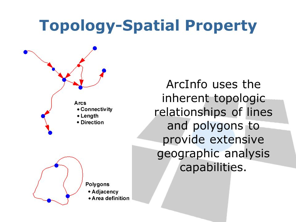 Topology-Spatial Property