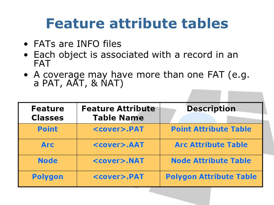 Feature attribute tables