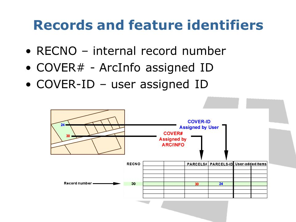 Records and feature identifiers