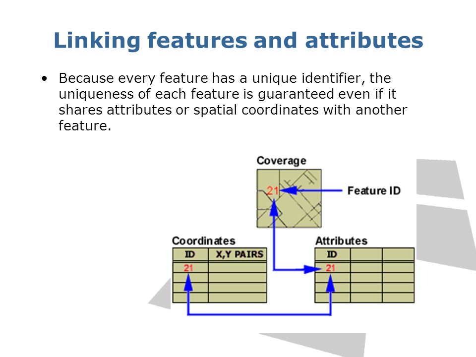 Linking features and attributes