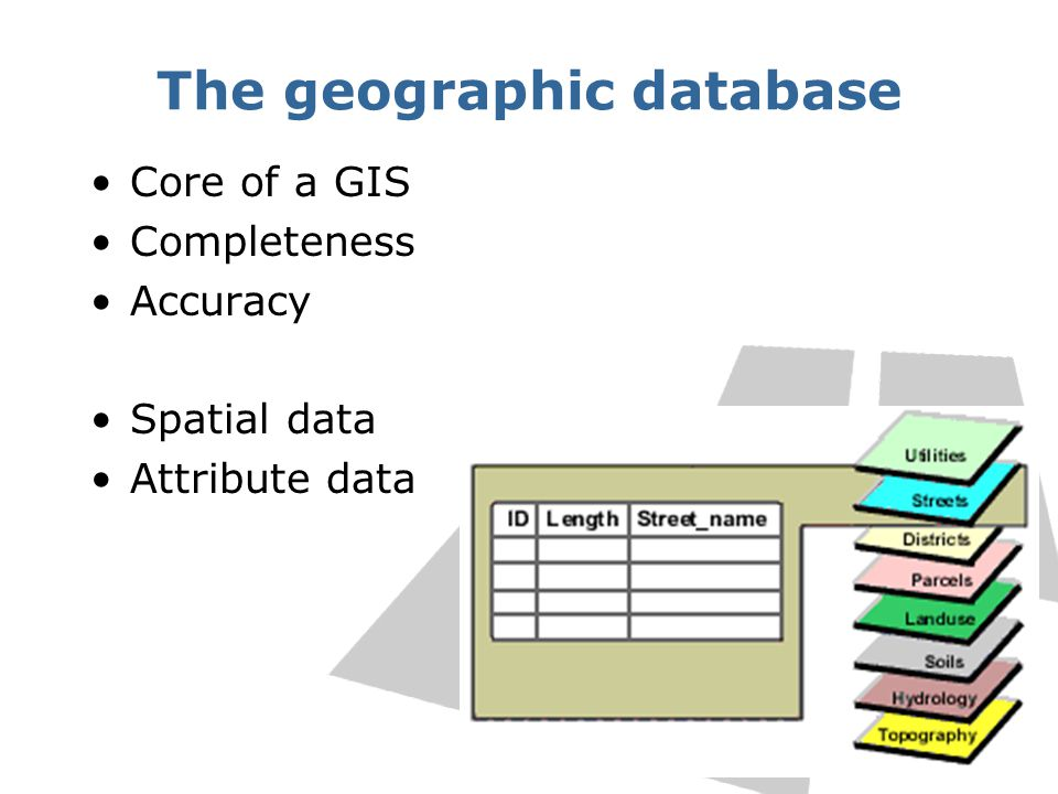 The geographic database