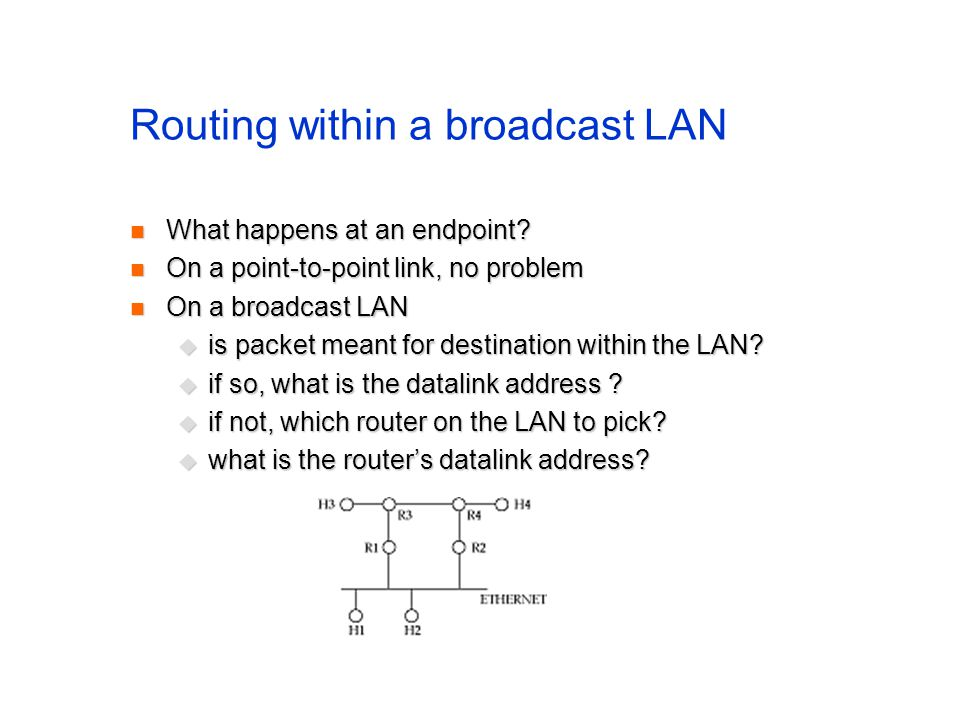 Routing within a broadcast LAN