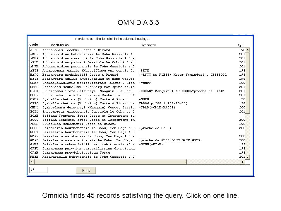 Omnidia finds 45 records satisfying the query. Click on one line.