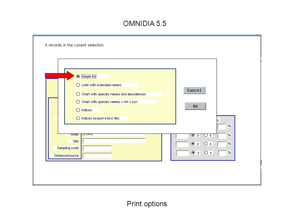 OMNIDIA 5.5 Print options