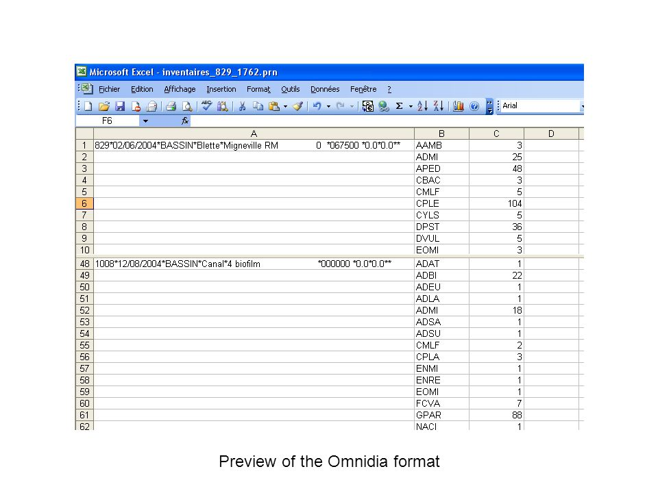 Preview of the Omnidia format