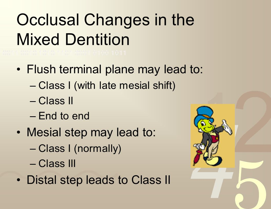Occlusal Changes in the Mixed Dentition