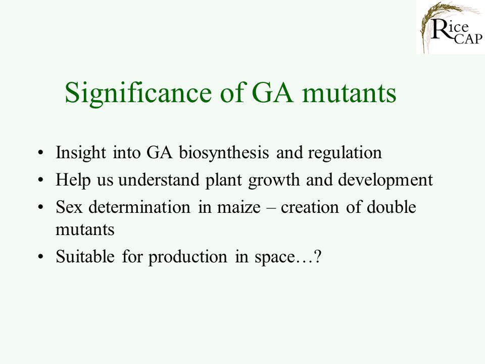 Significance of GA mutants