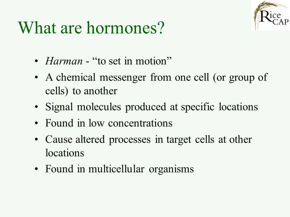 What are hormones Harman - to set in motion