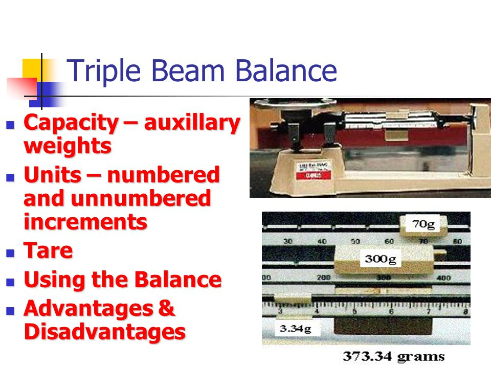 Triple Beam Balance Capacity – auxillary weights