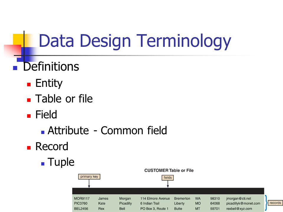 Data Design Terminology