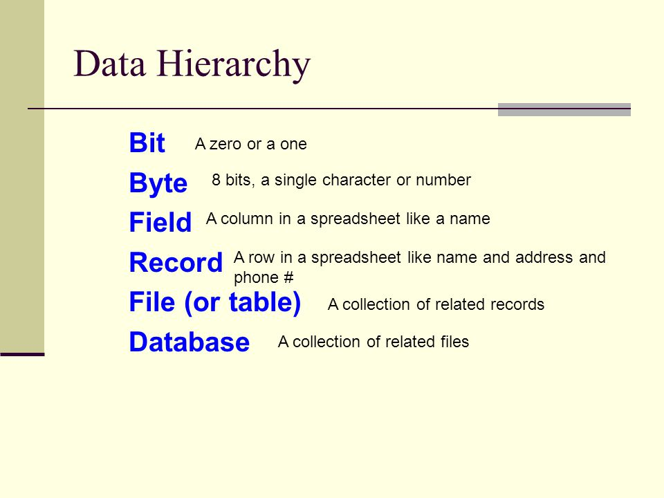 Data Hierarchy Bit Byte Field Record File (or table) Database