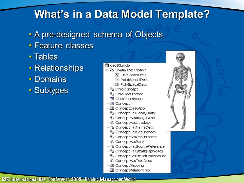 What's in a Data Model Template