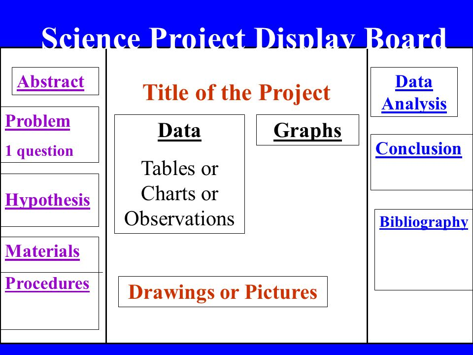 Science Project Display Board