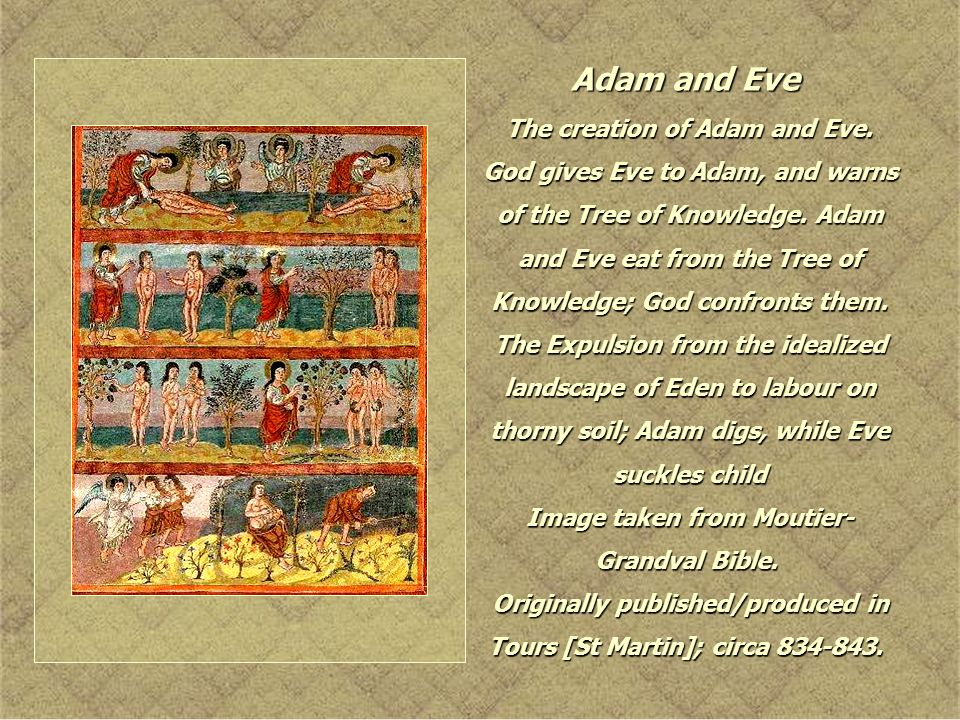 Adam and Eve The creation of Adam and Eve