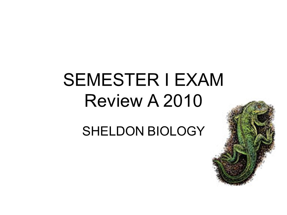 SEMESTER I EXAM Review A 2010