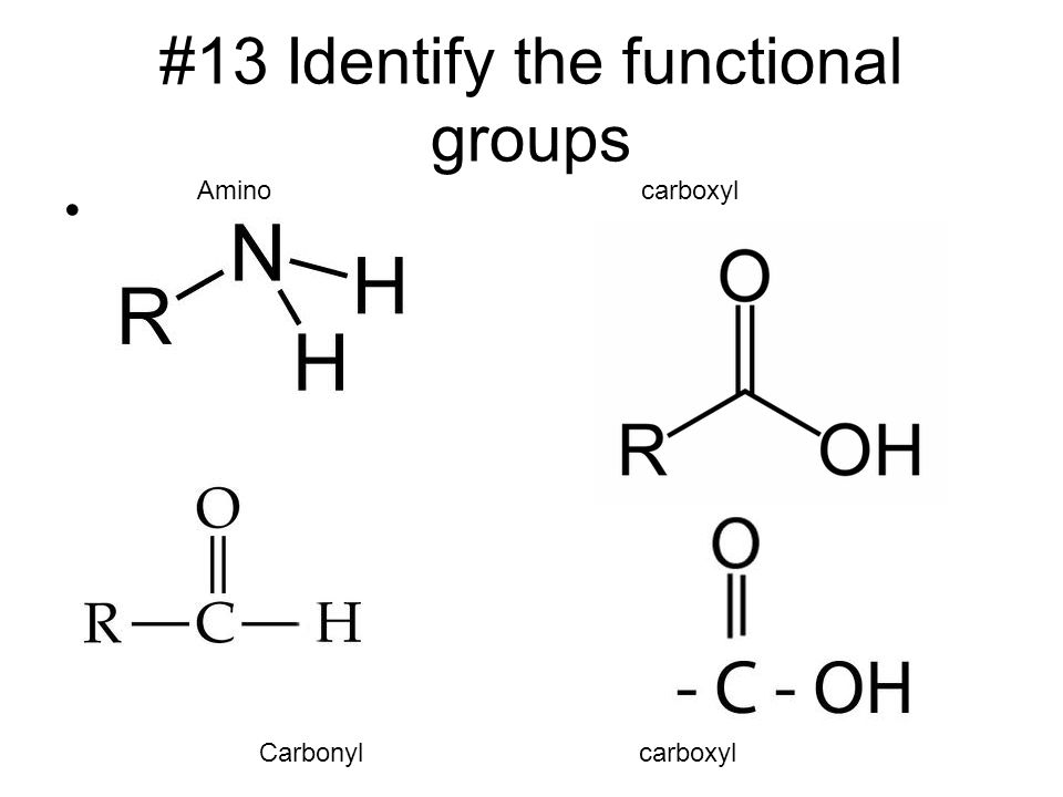 #13 Identify the functional groups