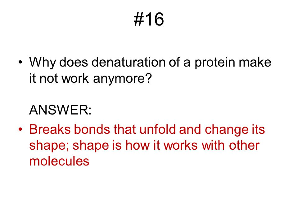 #16 Why does denaturation of a protein make it not work anymore ANSWER: