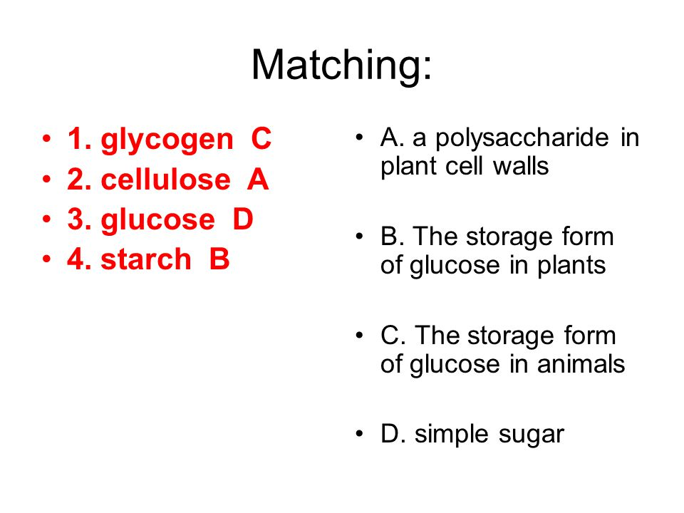 Matching: 1. glycogen C 2. cellulose A 3. glucose D 4. starch B