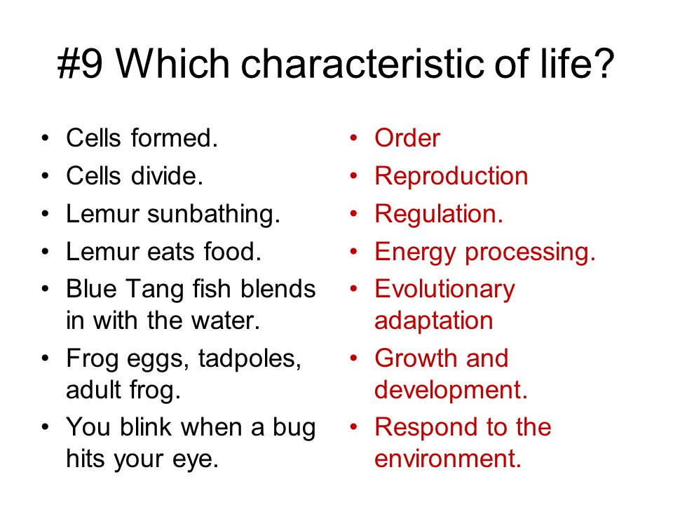 #9 Which characteristic of life