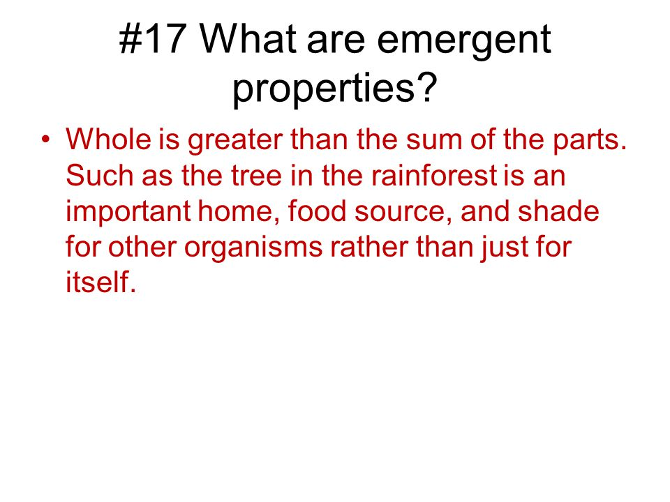 #17 What are emergent properties