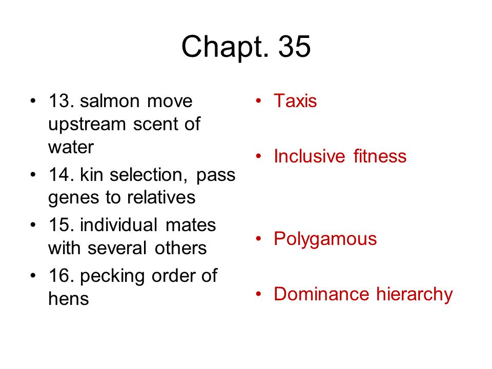 Chapt. 35 13. salmon move upstream scent of water