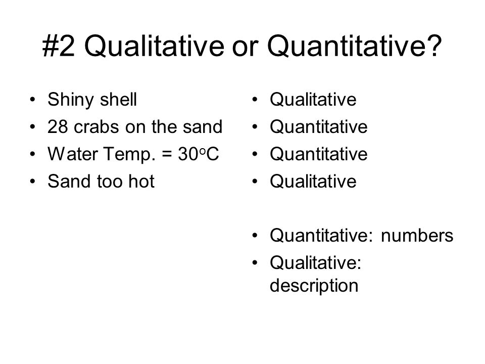 #2 Qualitative or Quantitative