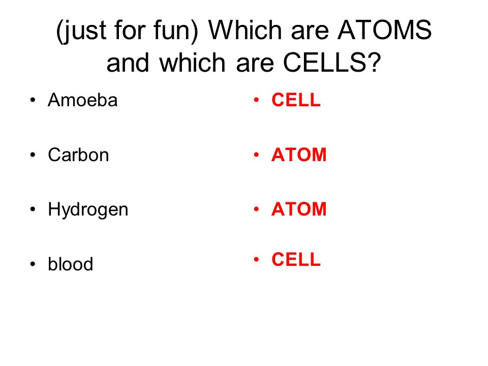 (just for fun) Which are ATOMS and which are CELLS