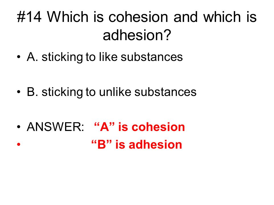 #14 Which is cohesion and which is adhesion