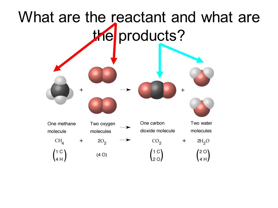 What are the reactant and what are the products