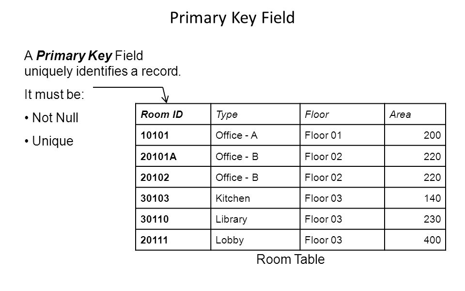 Primary Key Field A Primary Key Field uniquely identifies a record.