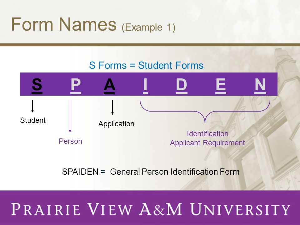 Form Names (Example 1) S P A I D E N S Forms = Student Forms