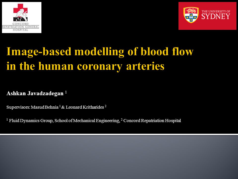 Image-based modelling of blood flow in the human coronary arteries