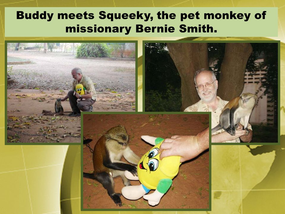 Buddy meets Squeeky, the pet monkey of missionary Bernie Smith.