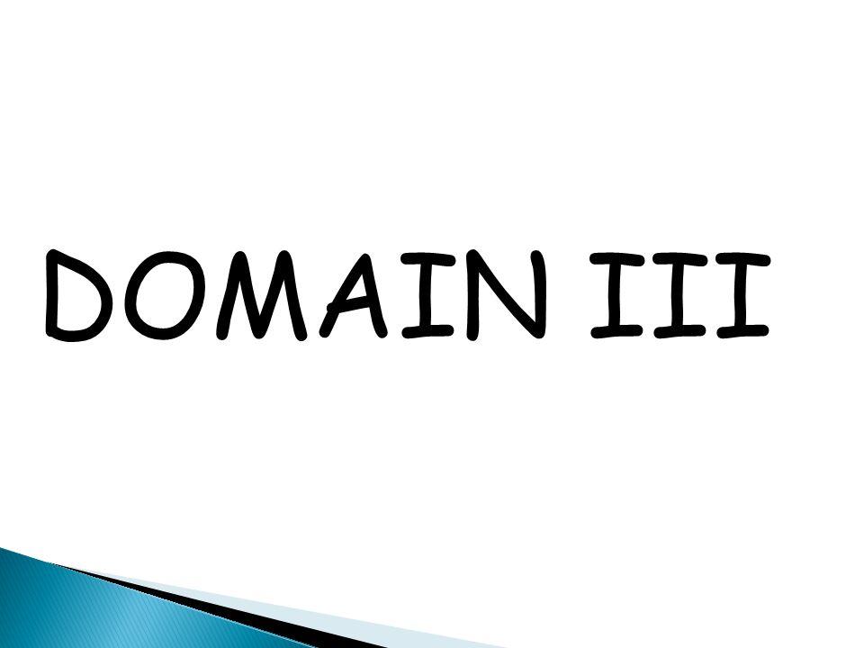 DOMAIN III