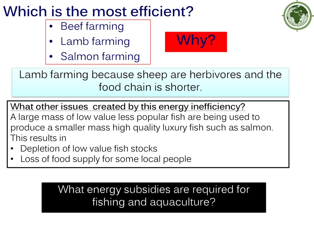 What are the environmental impacts aquaculture? - ppt download