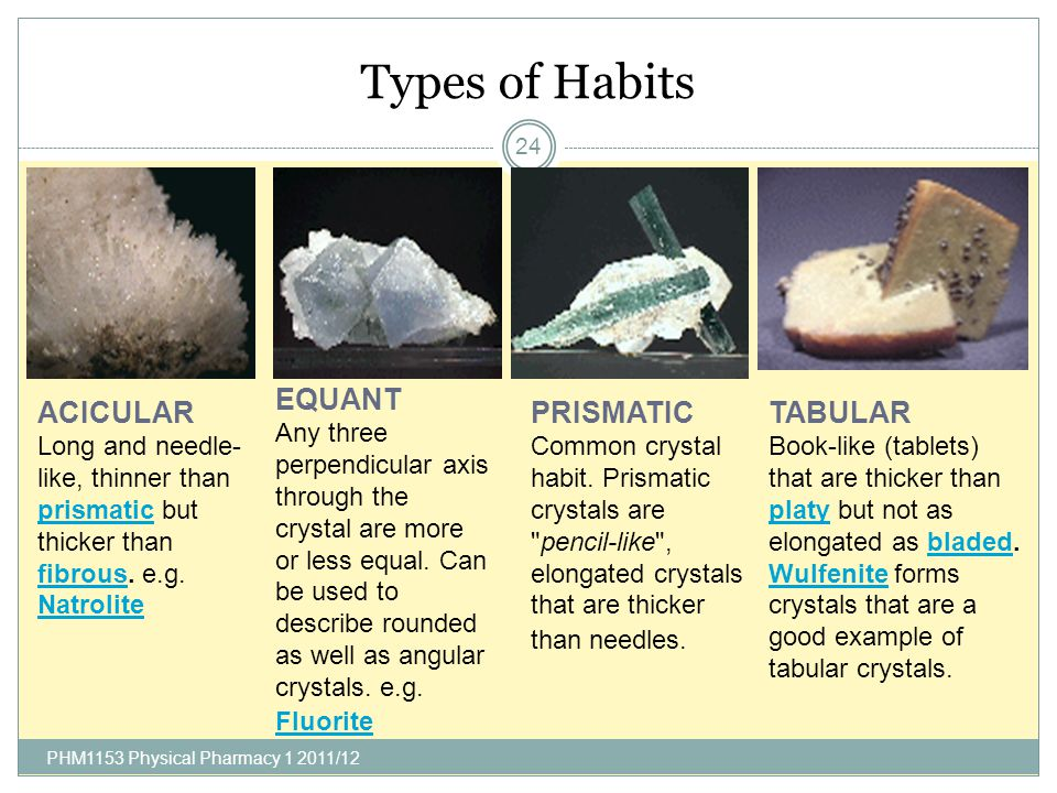 Types of Habits EQUANT ACICULAR PRISMATIC TABULAR