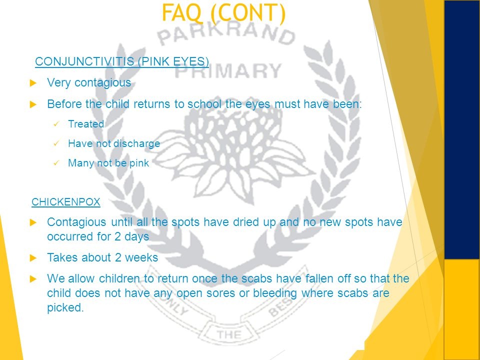 FAQ (CONT) CONJUNCTIVITIS (PINK EYES) Very contagious