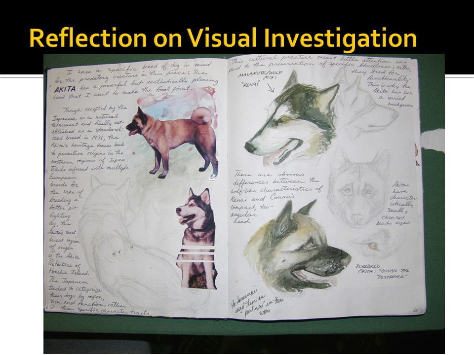 Reflection on Visual Investigation