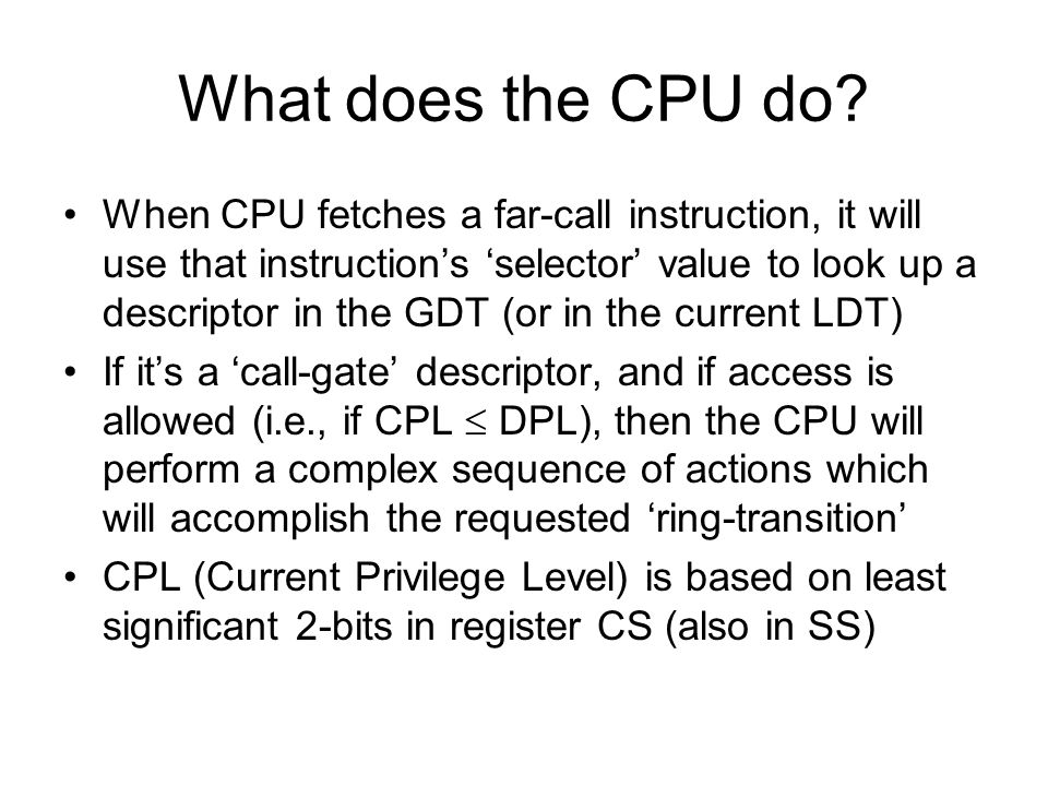 What does the CPU do