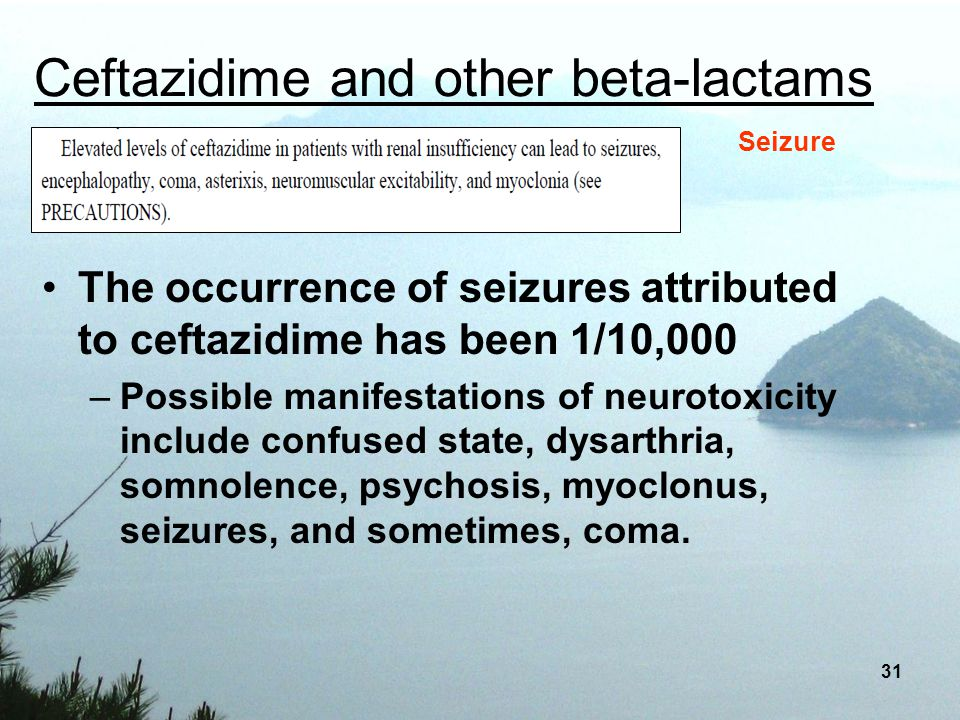 Ceftazidime and other beta-lactams