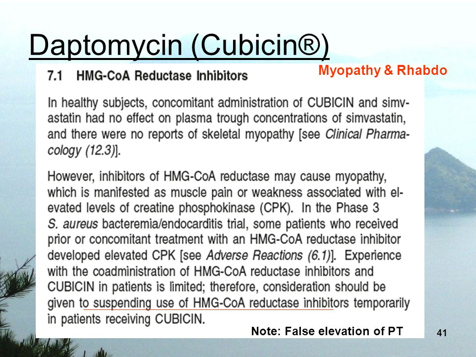 Daptomycin (Cubicin®)
