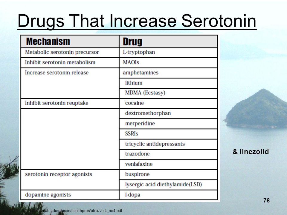 Drugs That Increase Serotonin