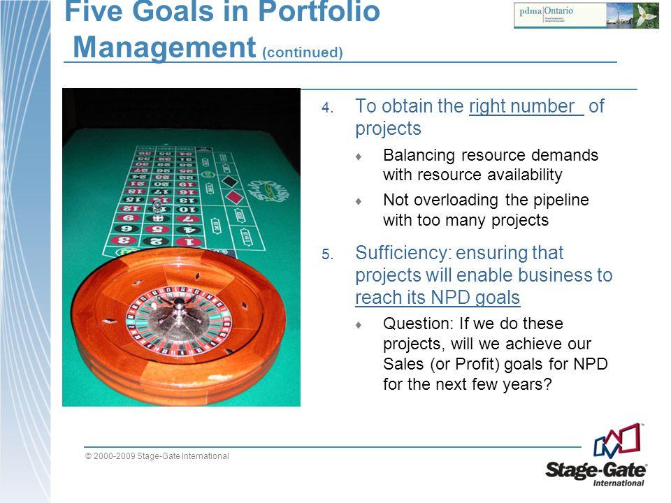 Five Goals in Portfolio Management (continued)