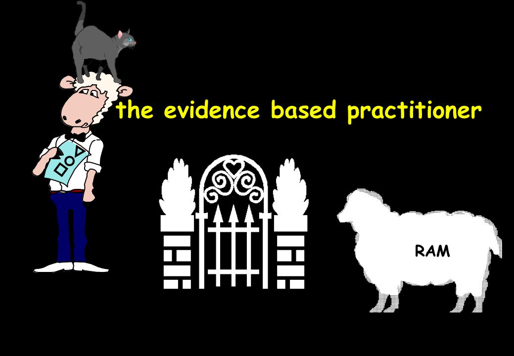 the evidence based practitioner